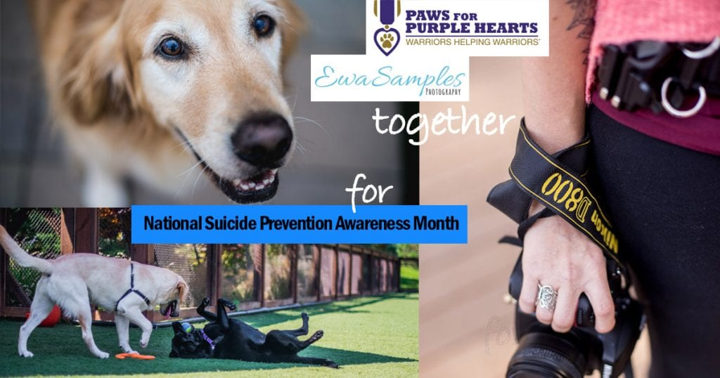 Paws for Purple Hearts Fundraising_Ewa Samples Photography
