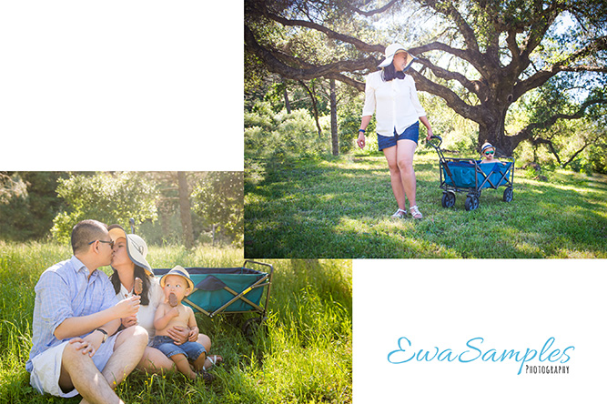 mother's day mini sessions ewa samples photography morgan hill