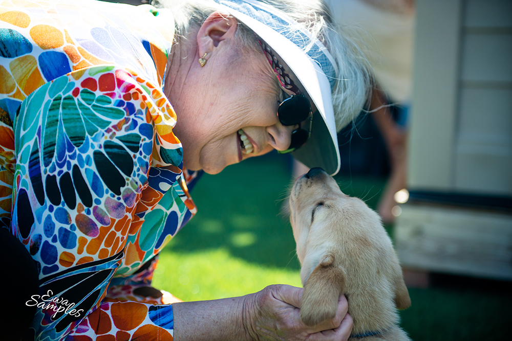 paws for purple hearts, puppy petting, June th _ewa samples photography